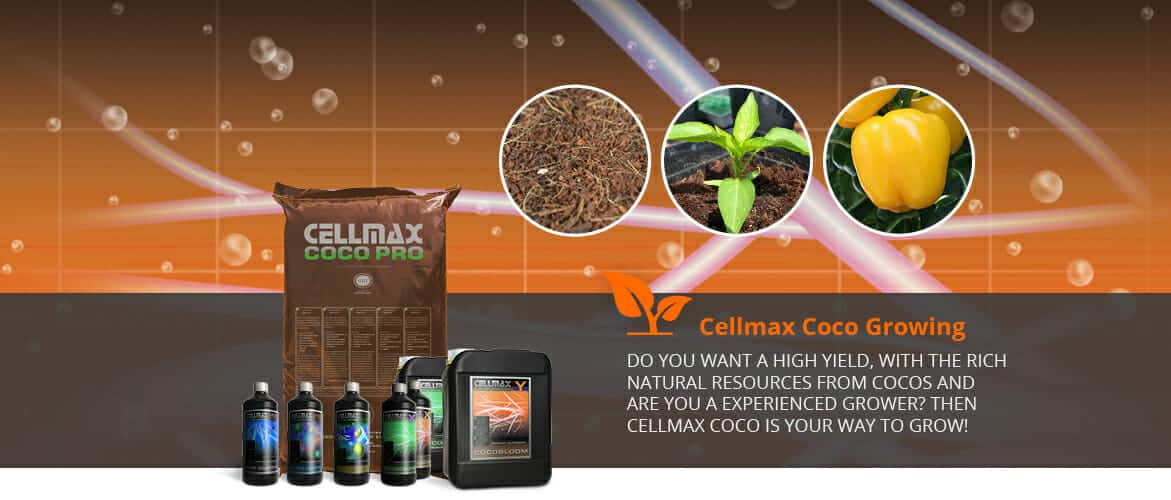 cellmax Coco Growing