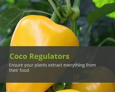 cellmax coco growing regulators