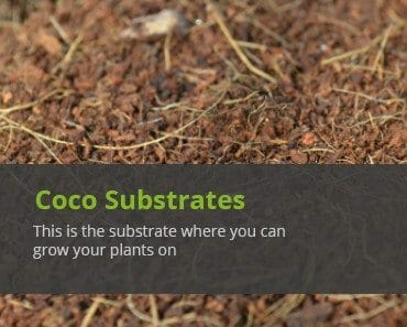 cellmax coco growing substrates