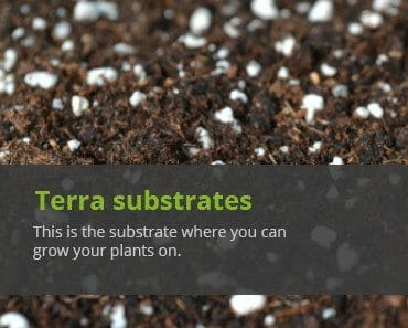 cellmax terra growing substrates